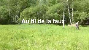 Au fil de la faux © CEN Isère - 2016