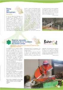 Étang des Nénuphars - Feuille de chêne n°13 - Juillet 2015